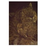 Snuggly Snow Leopard Large Poster