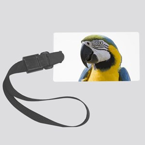 Blue and Yellow Macaw Thinking Large Luggage Tag