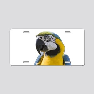 Blue and Yellow Macaw Think Aluminum License Plate