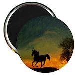 AFTM Old Stallion At Sunrise Magnet