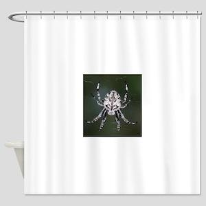 Spider at Night Shower Curtain
