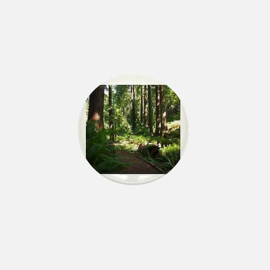 Redwoods Mini Button