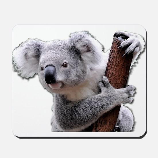 Koala Bear holding onto a tree Mousepad