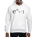 Euler's Formula Hooded Sweatshirt