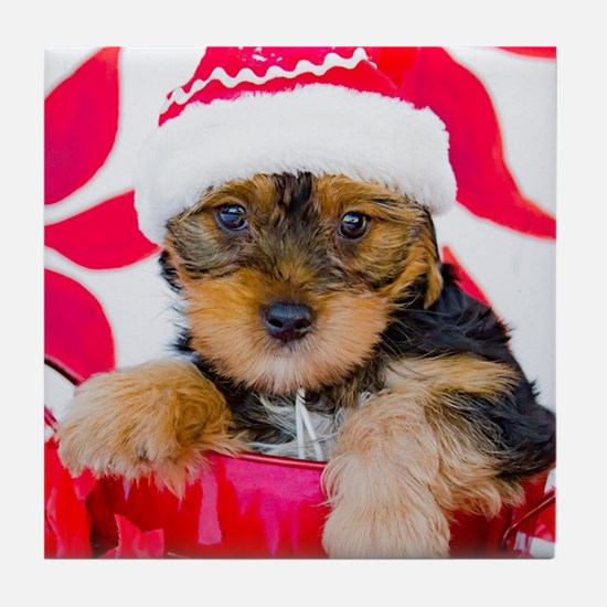 Yorkie Puppy in Santa Hat with Poinse Tile Coaster