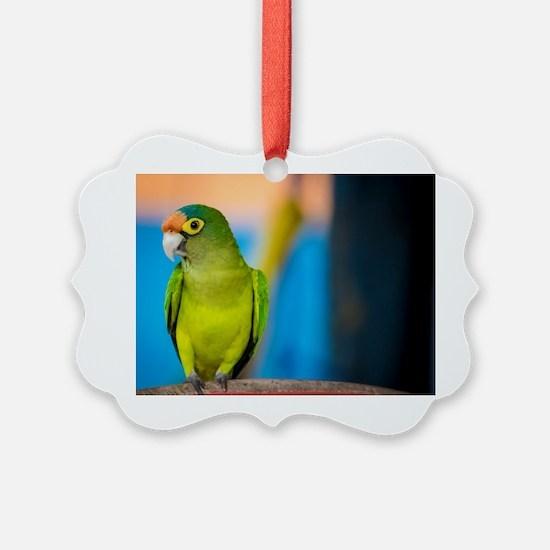 Funny Parakeets Ornament