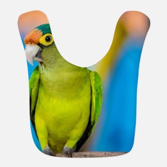 Green Parakeet on Nicaraguan Is Polyester Baby Bib