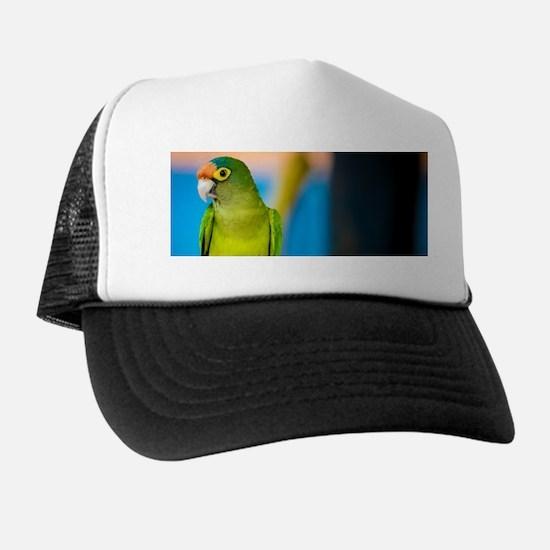 Green Parakeet on Nicaraguan Island Trucker Hat