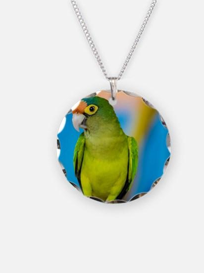 Green Parakeet on Nicaraguan Necklace