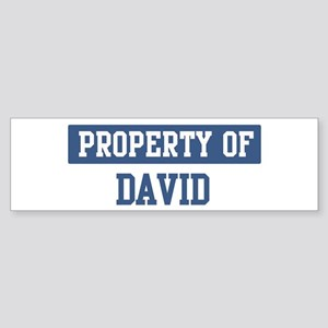 Property of DAVID Bumper Sticker