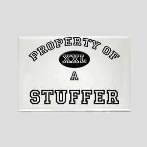 Property of a Stuffer Rectangle Magnet