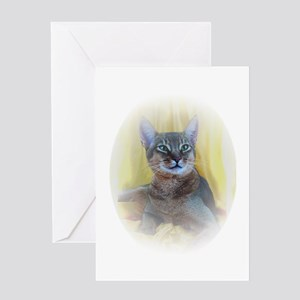 Abyssinian Cat Photo Greeting Card