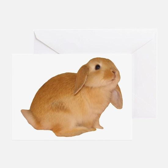 """bunny 5"" Greeting Card"