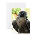 Speed Demon Greeting Cards (Pk of 20)
