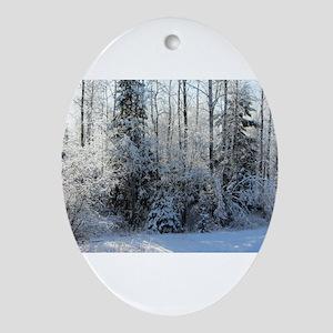 Deep Woods Winter Glow Oval Ornament