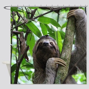 Sloth_20171101_by_JAMFoto Shower Curtain