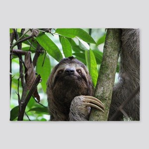 Sloth_20171101_by_JAMFoto 5'x7'Area Rug