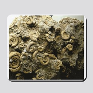 cluster of fossil shells Mousepad