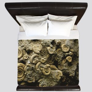cluster of fossil shells King Duvet
