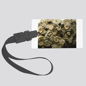 cluster of fossil shells Large Luggage Tag