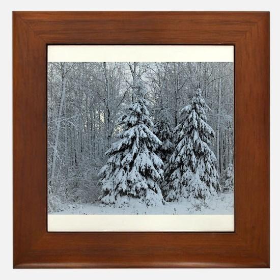 Majestic White Pines in Winter Framed Tile