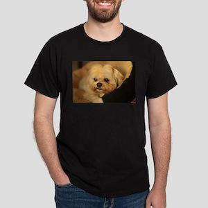 Koko blond Lhasa apso relaxing in soft dog T-Shirt