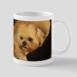 Koko blond Lhasa apso relaxing in soft dog be Mugs