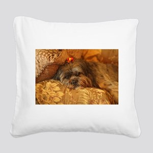 Kona Lhasa type dog relaxing Square Canvas Pillow