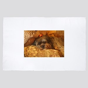 Kona Lhasa type dog relaxing on floral 4' x 6' Rug