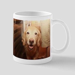 candid Nala golden retriever dog peeking in k Mugs