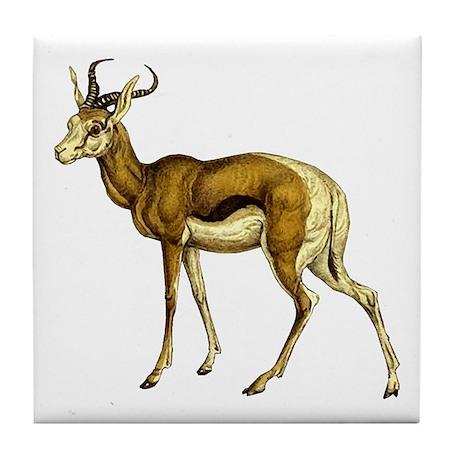Springbok Antelope Tile Coaster