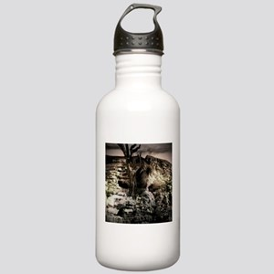 The Crucifixion Sports Water Bottle