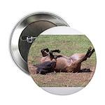 "White Bird Appaloosa Horse Re 2.25"" Button (10 pac"
