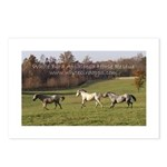 White Bird Appaloosa Horse Re Postcards (Package o