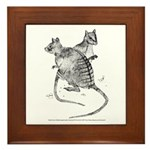 Banded Hare Wallaby Framed Tile