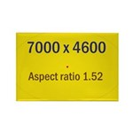 Large Poster Image Rectangle Magnet (100 pack)