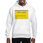 Large Poster Image Hooded Sweatshirt