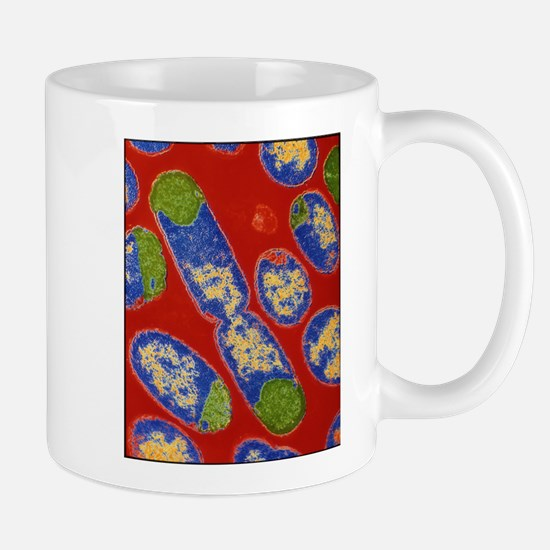 E. coli bacteria Stainless Steel Travel Mugs