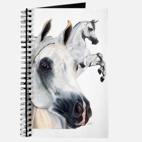 Grey Arabian Journal