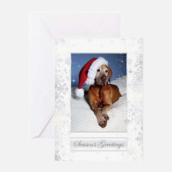 Vizsla Christmas Greeting Cards Cc001