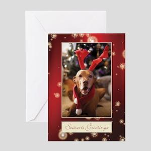Vizsla Christmas Greeting Cards Cc002
