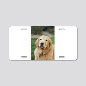 Nala in front of lawn golde Aluminum License Plate