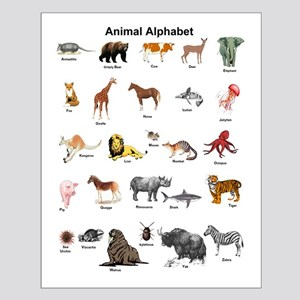 Animal pictures alphabet Small Poster