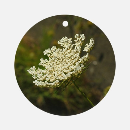 Queen Annes Lace Ornament (Round)