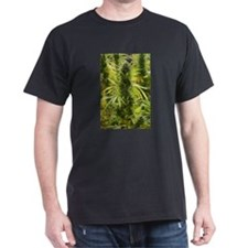 Blackberry Kush Dark T-Shirt