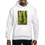 Blackberry Kush Hooded Sweatshirt