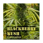 Blackberry Kush (with name) Tile Coaster
