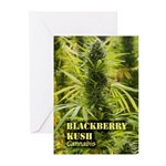 Blackberry Kush (with na Greeting Cards (Pk of 10)