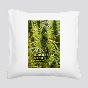 Blackberry Kush (with name) Square Canvas Pillow