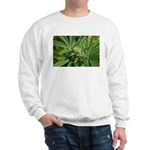 Larry OG Sweatshirt